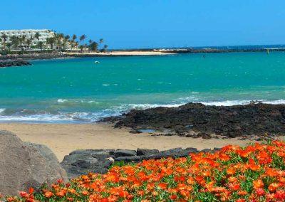Panorámica Costa de Lanzarote