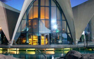 Oferta cultural Valencia ≫ Museo de las Ciencias + Oceanografic