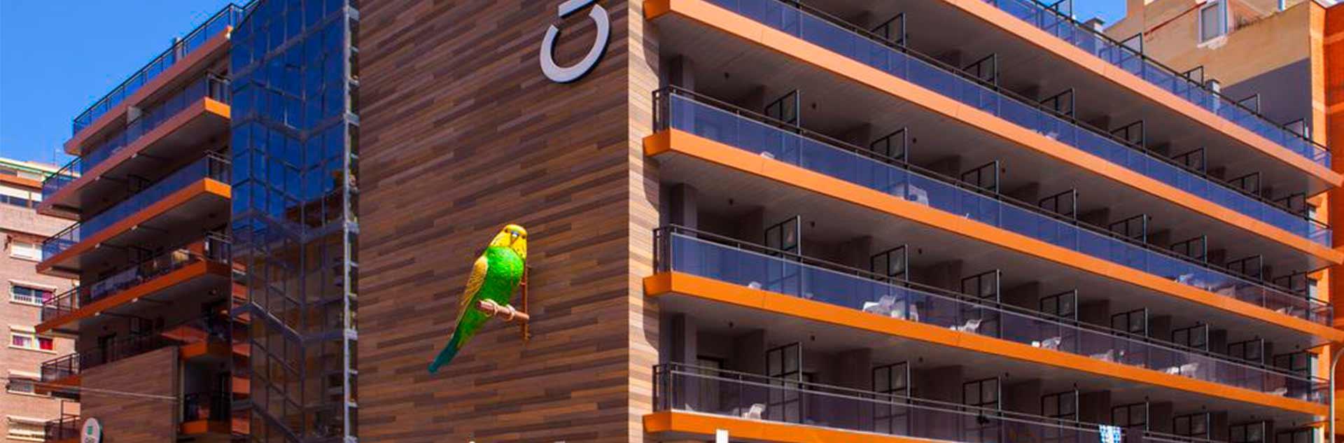 Pajarito de la fachada del Hotel Cuco 3*