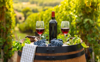 Llegó el momento de disfrutar del 🍁 turismo vinícola para el otoño
