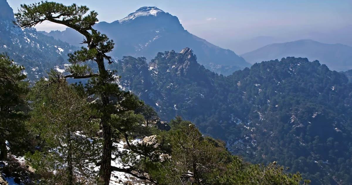 Disfruta de una nevada de invierno en el Parque Natural de Cazorla, Segura y Las Villas.