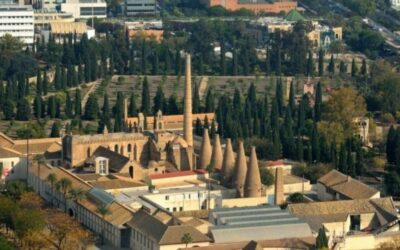 Visitar el Monasterio de la Cartuja en Sevilla 🏰 ¡Más detalles aquí!